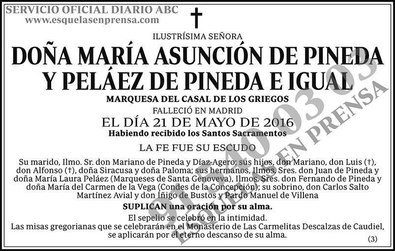 María Asunción de Pineda y Peláez de Pineda e Igual